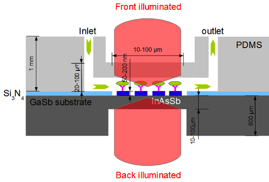 nanoMIR plasmonics